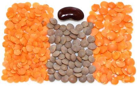 Masoor & Red Lentils