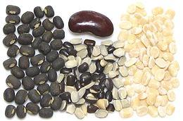 Beans, Peas & Lentils
