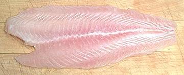 Swai Basa Tra Vietnamese Catfish Shark Catfish